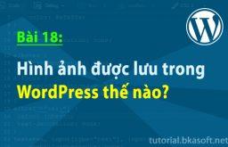 Bài 18: Hình ảnh được lưu trong WordPress thế nào?