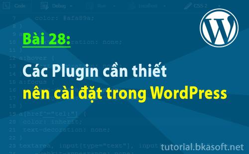 cac-plugin-can-thiet-nen-cai-dat-trong-wordpress