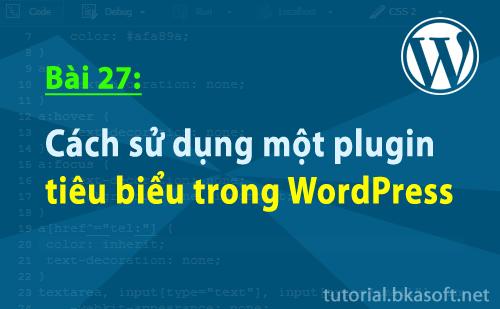 cach-su-dung-mot-plugin-tieu-bieu-trong-wordpress