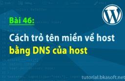 Bài 46: Cách trỏ tên miền về host bằng DNS của host