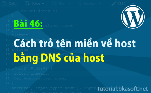 cach-tro-ten-mien-ve-host-bang-dns-cua-host