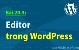 Bài 20.3: Editor trong WordPress