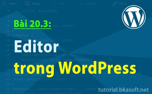 editor-trong-wordpress