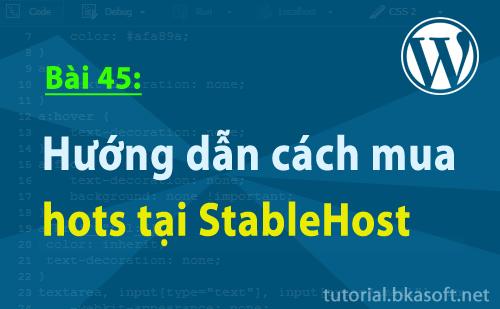 Hướng dẫn cách mua hots tại StableHost