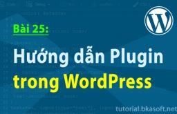 Bài 25: Hướng dẫn Plugin trong WordPress
