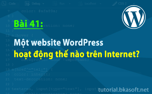 mot-website-wordpress-hoat-dong-the-nao-tren-internet