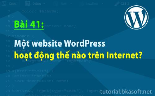 mot-website-wordpress-hoat-dong-the-nao-tren-internet