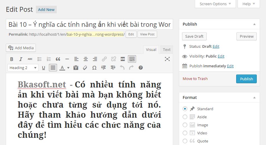 y-nghia-cac-tinh-nang-an-khi-viet-bai-trong-wordpress-1