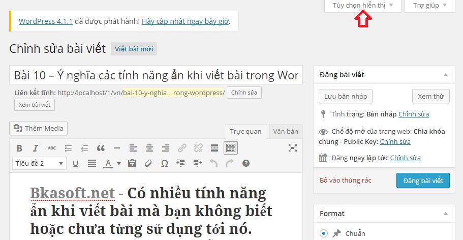 y-nghia-cac-tinh-nang-an-khi-viet-bai-trong-wordpress