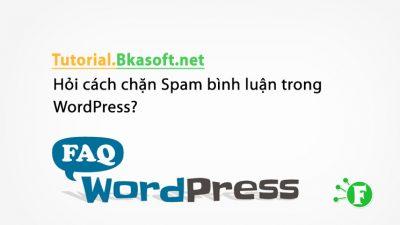 Hỏi cách chặn Spam bình luận trong WordPress?