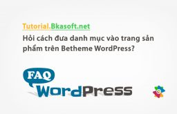 Hỏi cách đưa danh mục vào trang sản phẩm trên Betheme WordPress?