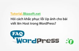 Hỏi cách khắc phục lỗi Up ảnh cho bài viết lên Host trong WordPress?
