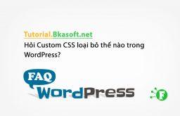 Hỏi Custom CSS loại bỏ thế nào trong WordPress?