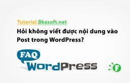 Hỏi không viết được nội dung vào Post trong WordPress?