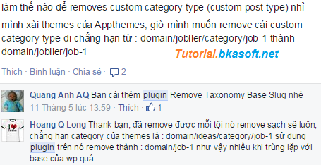 hoi-lam-the-nao-de-removes-custom-category-type-trong-wordpress