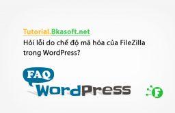 Hỏi lỗi do chế độ mã hóa của FileZilla trong WordPress?