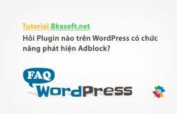 Hỏi Plugin nào trên WordPress có chức năng phát hiện Adblock?