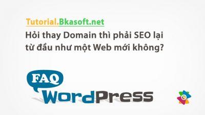 Hỏi thay Domain thì phải SEO lại từ đầu như một Web mới không?