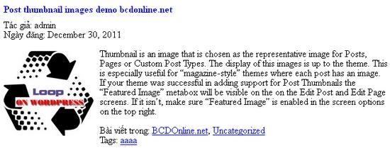 su-dung-post-thumbnail-image-trong-wordpress2
