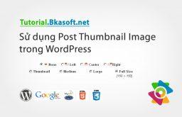 Sử dụng Post thumbnail image trong WordPress