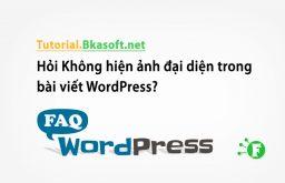 Hỏi Không hiện ảnh đại diện trong bài viết WordPress?