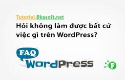Hỏi không làm được bất cứ việc gì trên WordPress?