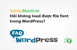 Hỏi không load được file font trong WordPress?