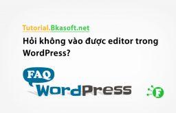 Hỏi không vào được editor trong WordPress?