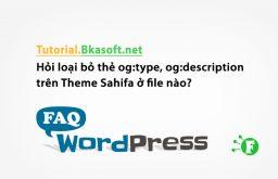 Hỏi loại bỏ thẻ og:type, og:description trên Theme Sahifa ở file nào?