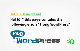 "Hỏi lỗi "" this page contains the following errors"" trong WordPress?"