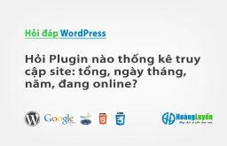 Hỏi Plugin nào thống kê truy cập site: tổng, ngày tháng, năm, đang online?