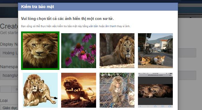 Chọn hình với tính năng kiểm tra bảo mật của Facebook