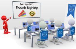 Dịch vụ đào tạo SEO Doanh nghiệp tại Hà Nội