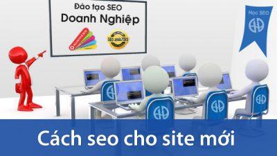 Học SEO – Cách SEO cho site mới phần 1