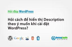 Hỏi cách để hiển thị Description theo ý muốn khi cài đặt WordPress?