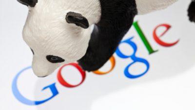 Bản tin SEO: Cộng đồng dậy sóng với Panda 4.2