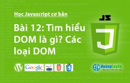 Tìm hiểu DOM là gì? Các loại DOM trong Javascript