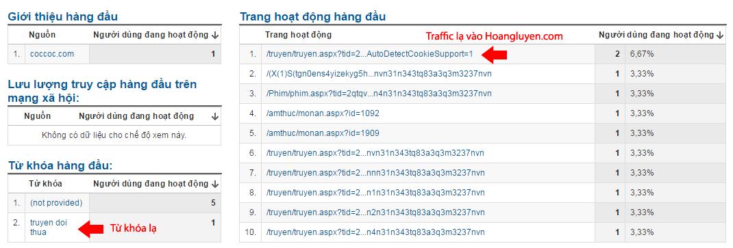 Traffic ảo từ Vnthuquan.net