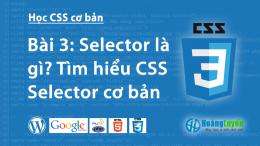 Selector là gì? Tìm hiểu về Selector trong CSS