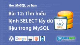 Tìm hiểu lệnh SELECT lấy dữ liệu trong MySQL