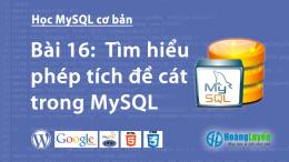 Tìm hiểu phép tích đề cát trong MySQL