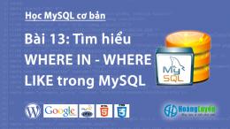 Tìm hiểu WHERE IN – WHERE LIKE trong MySQL